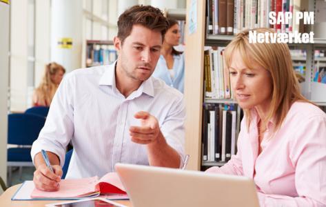Online SAP PM netværksmøde